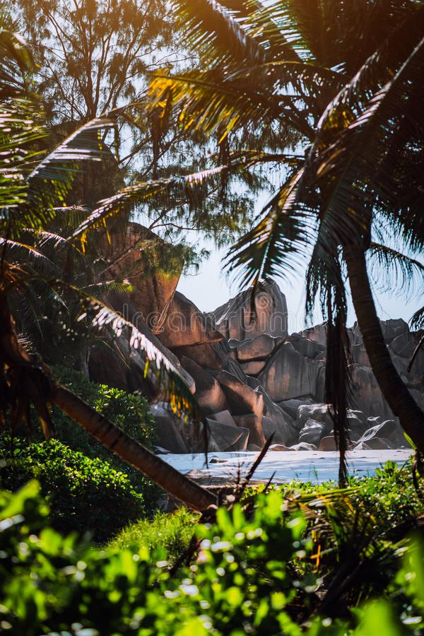 Granite rocks and lush exotic vegetation at a tropical beach on La Digue, Seychelles. Blurred foreground stock photography