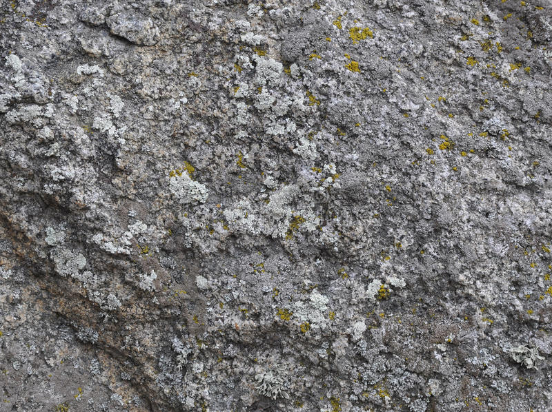 Granite stone with moss. Appropriate background stock photography
