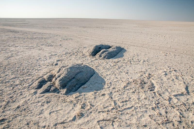 Granitutstötningar inom Makgadikgadi saltar pannan fotografering för bildbyråer