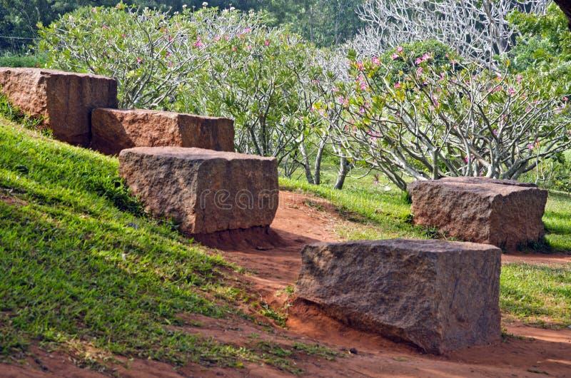 Granitwürfel im Park und blühende Büsche in Auroville, Indien lizenzfreie stockfotos