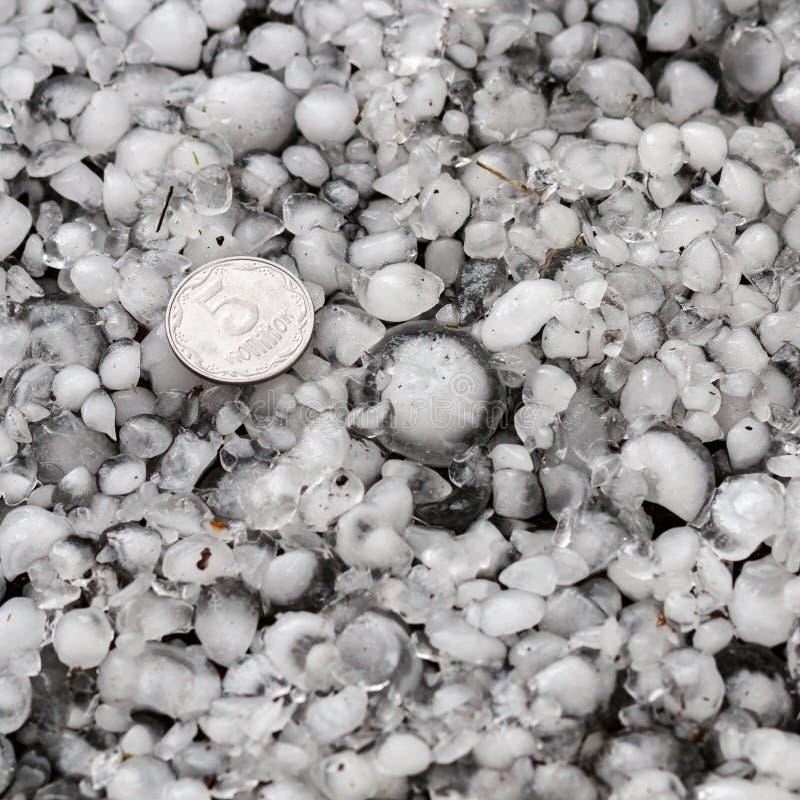 Granizos en la tierra después de la granizada, saludo del gran tamaño, saludo clasificado con una moneda más grande fotos de archivo