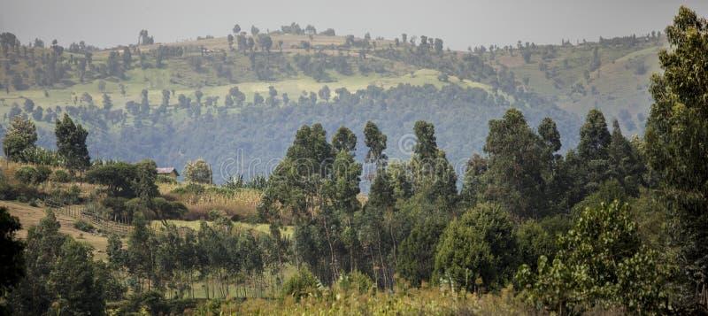Granja, casa, y montañas en montañas de Etiopía imagenes de archivo