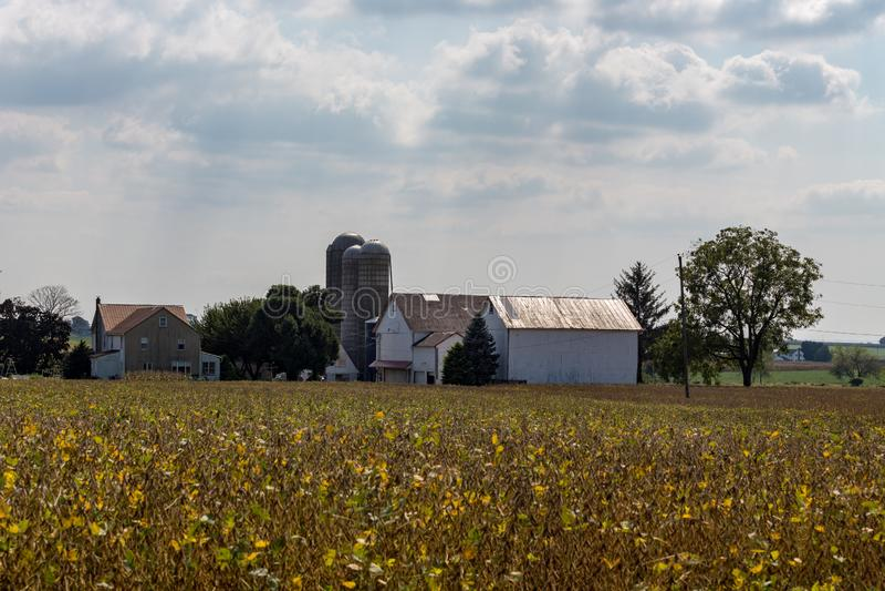 Granja de Amish en el condado de Lancaster imágenes de archivo libres de regalías
