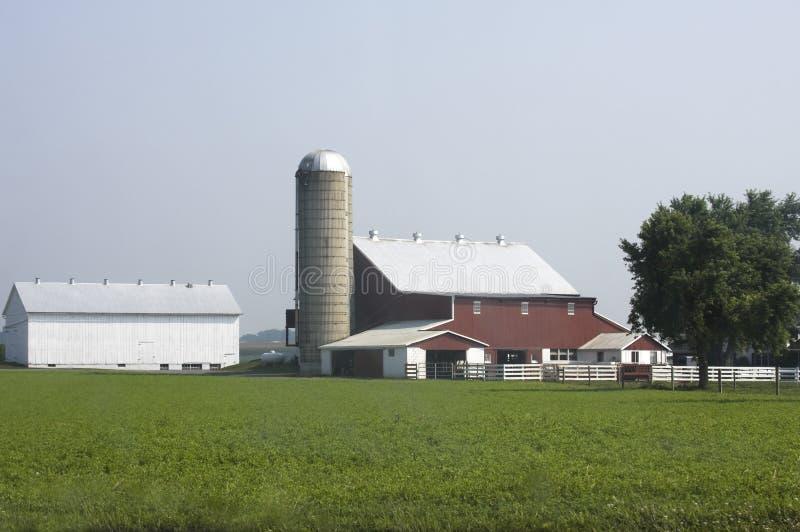Granja de Amish en una mañana nebulosa foto de archivo