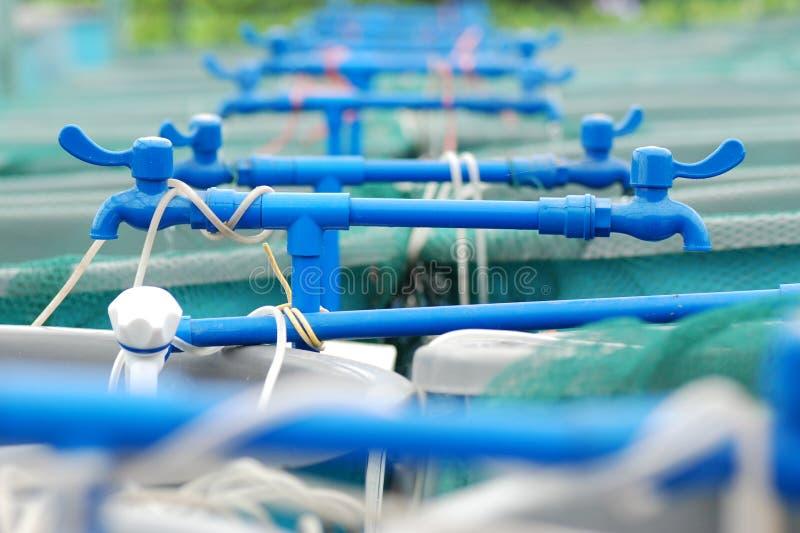 Granja de la acuacultura de la agricultura fotos de archivo libres de regalías