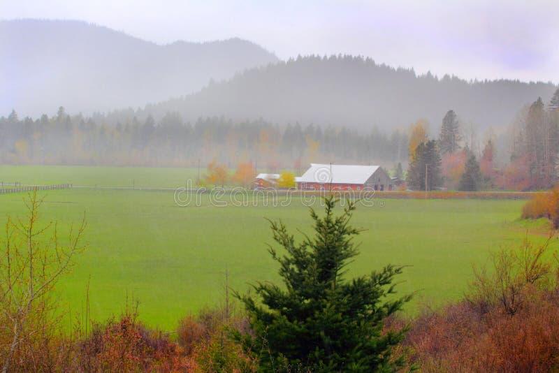 Granja de niebla del valle imagen de archivo