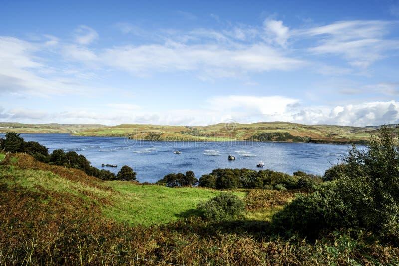 Granja de pescados de Skye imágenes de archivo libres de regalías