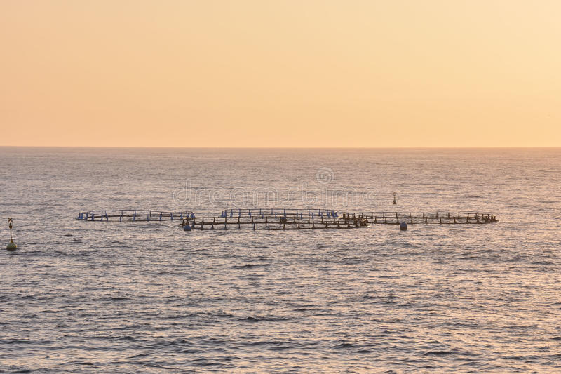 Granja de pescados en el Océano Atlántico fotos de archivo libres de regalías