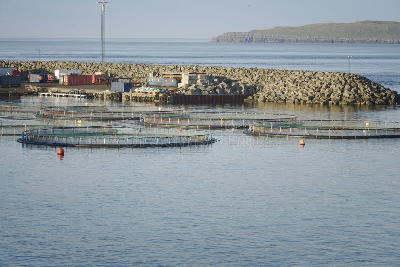 Granja de pescados en Noruega septentrional imagen de archivo libre de regalías