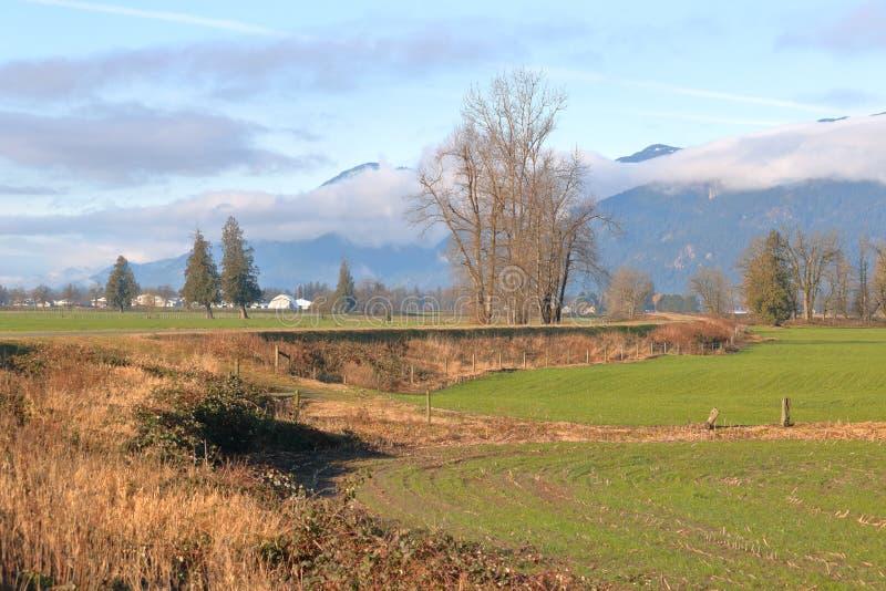 Granja rural y agrícola anchos foto de archivo libre de regalías