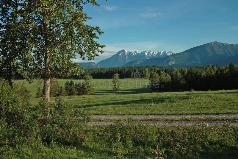 Granja, valle del río Columbia, A.C., Canadá fotos de archivo libres de regalías