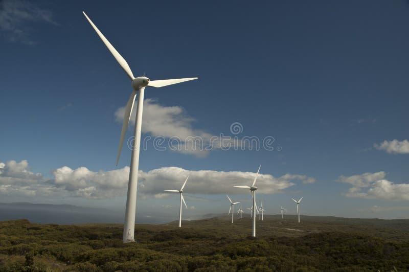 Granjas de viento imagen de archivo