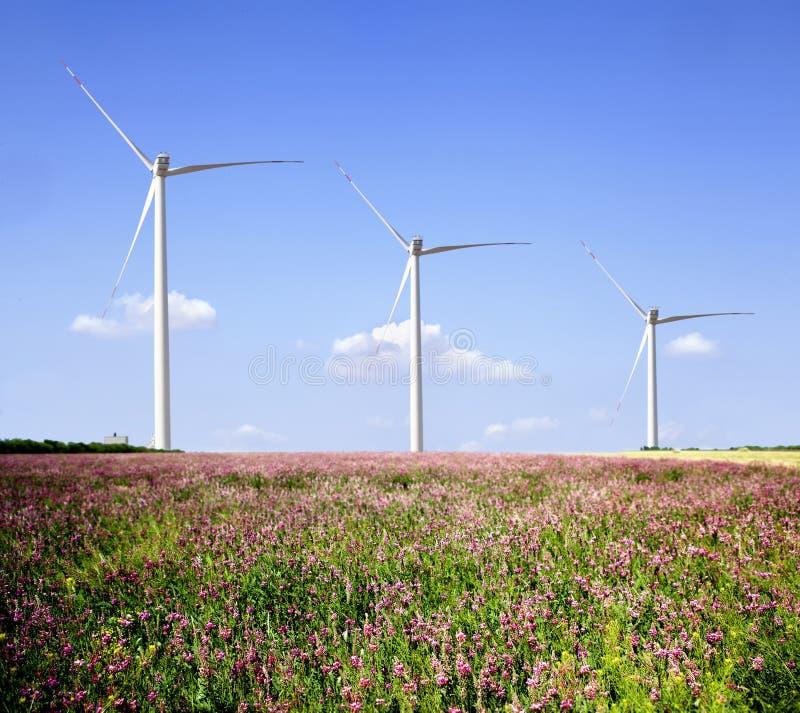 Granjas de viento. foto de archivo libre de regalías