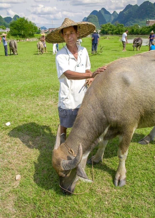 Granjero chino local con el búfalo de agua Paisaje hermoso en Yangshuo, Guangxi, China foto de archivo