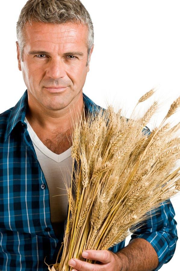 Granjero con el retrato del trigo imágenes de archivo libres de regalías