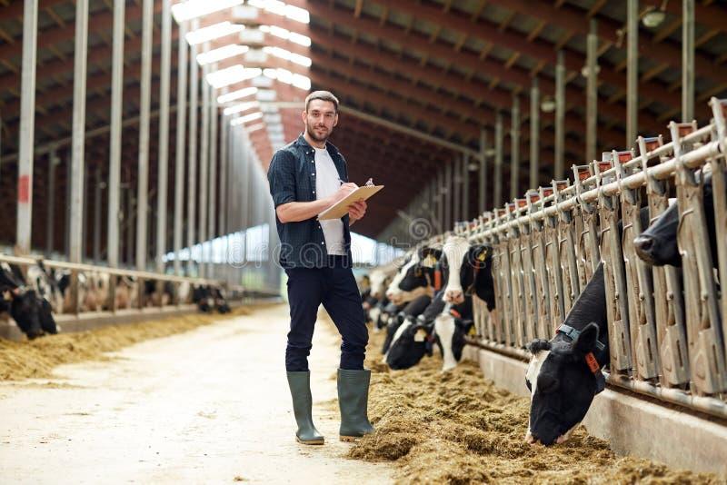 Granjero con el tablero y las vacas en establo en granja fotos de archivo