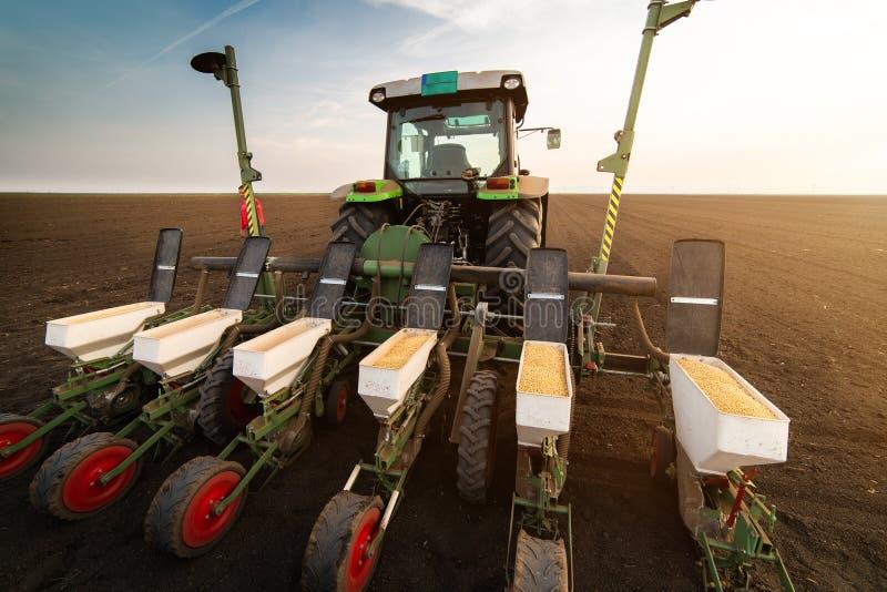 Granjero con el tractor que siembra cosechas de la soja en el campo agr?cola foto de archivo
