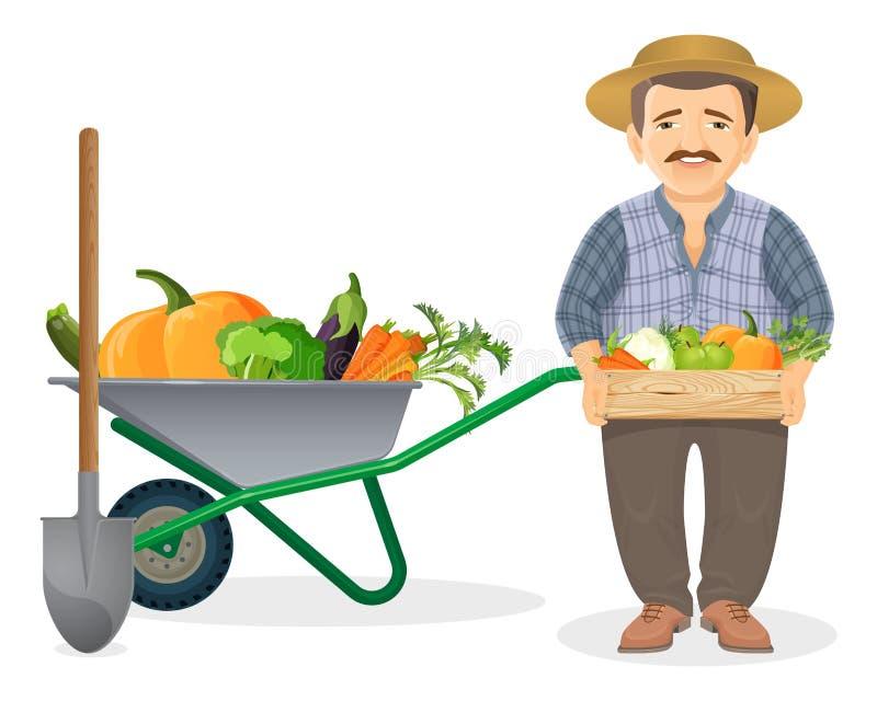 Granjero con la cosecha en carro del metal y caja de madera ilustración del vector