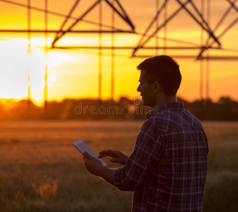 Granjero con la tableta en campo en la puesta del sol imagenes de archivo