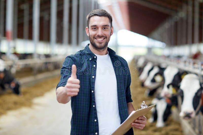 Granjero con las vacas que muestran los pulgares para arriba en la granja lechera fotos de archivo libres de regalías