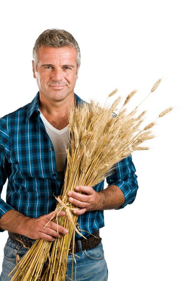 Granjero con trigo imagen de archivo