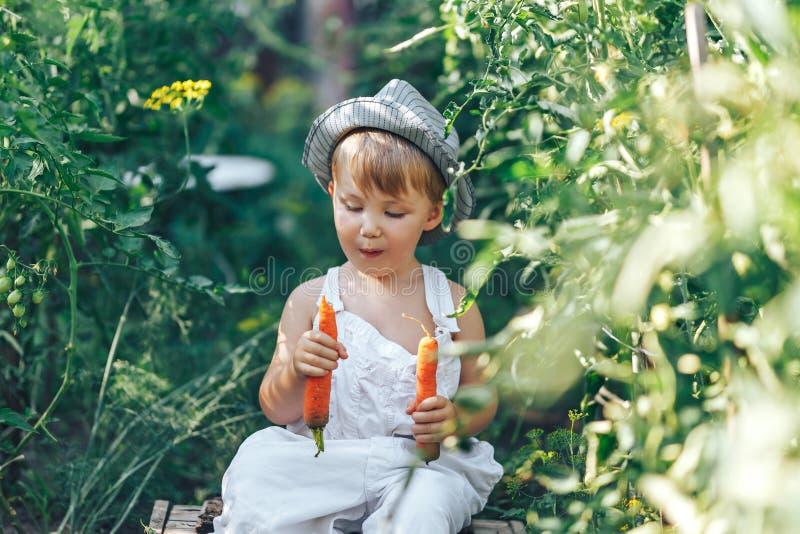 Granjero de bebé con las zanahorias y el clother cacual que se sientan en hierba verde imagen de archivo libre de regalías