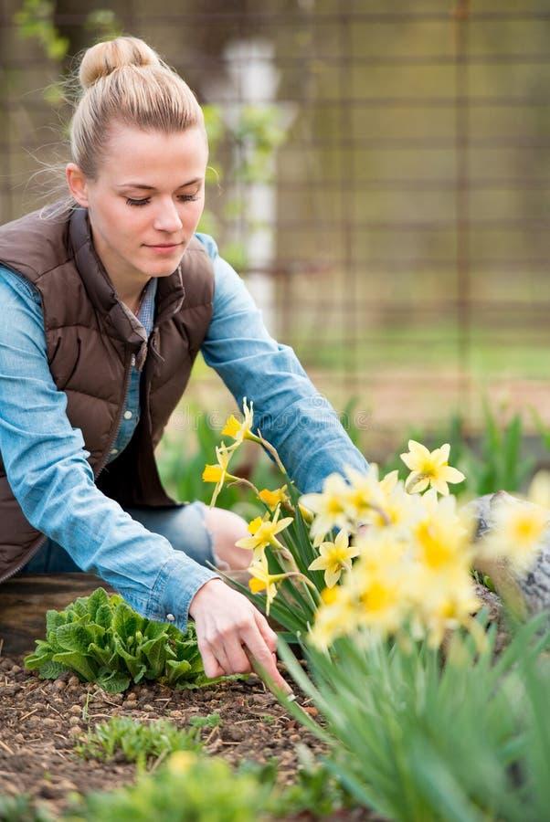 Granjero de la muchacha que trabaja en el jardín con las flores Plantación de DA imágenes de archivo libres de regalías