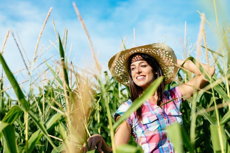 Granjero de sexo femenino hermoso en campo de maíz fotografía de archivo libre de regalías