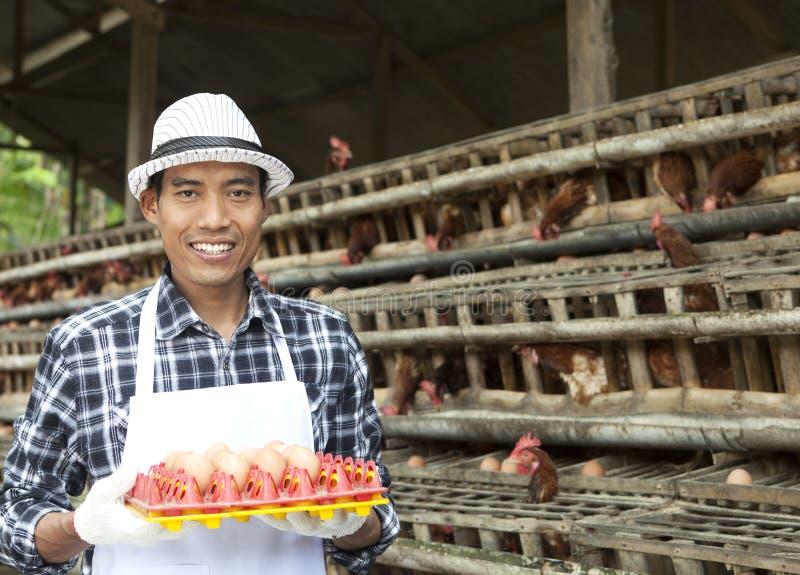 Granjero en casa de gallina imagen de archivo