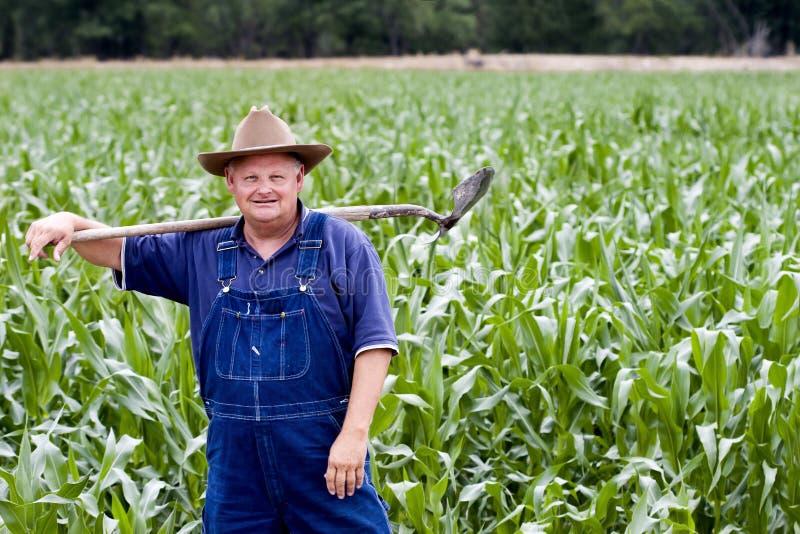Granjero en los campos de maíz fotos de archivo libres de regalías