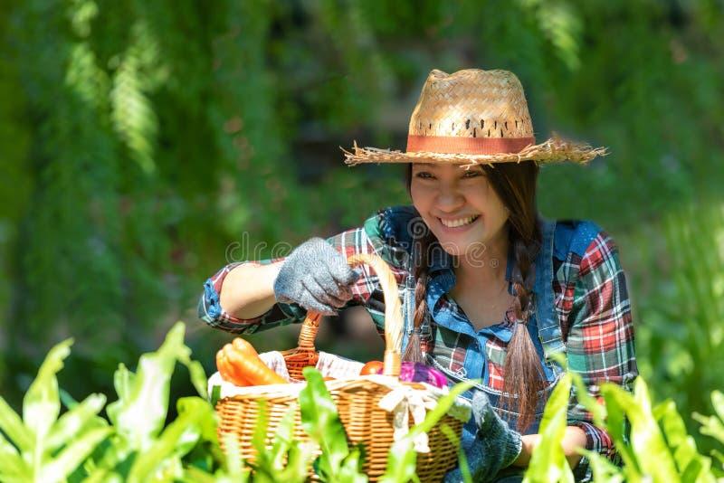 Granjero feliz smilling asiático de las mujeres que sostiene una cesta de verduras orgánica en el viñedo al aire libre imágenes de archivo libres de regalías