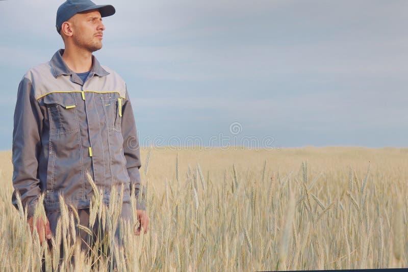 Granjero joven cerca de un campo del centeno Copie el espacio foto de archivo libre de regalías