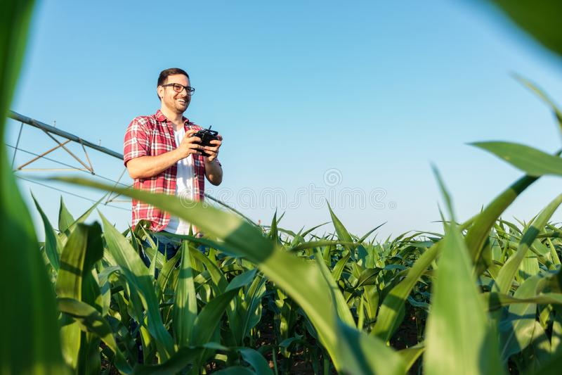 Granjero joven moderno feliz que examina sus campos con un abejón fotografía de archivo