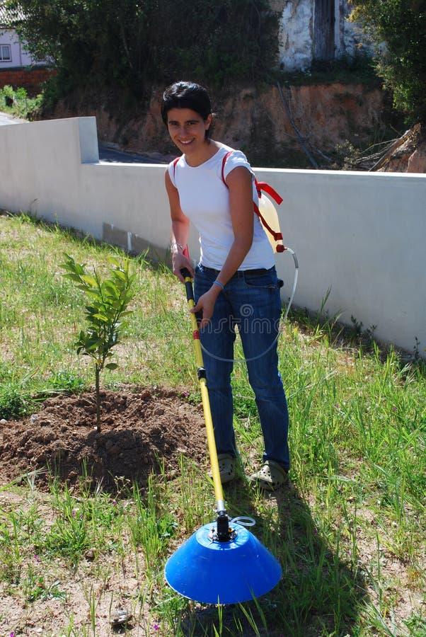 Granjero joven que fertiliza el suelo fotos de archivo