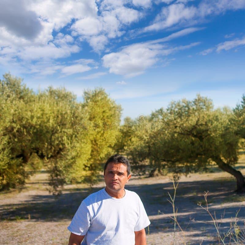Granjero latino en campo mediterráneo del olivo foto de archivo libre de regalías