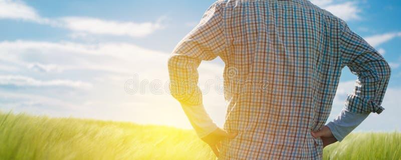 Granjero que mira el sol en el horizonte fotografía de archivo