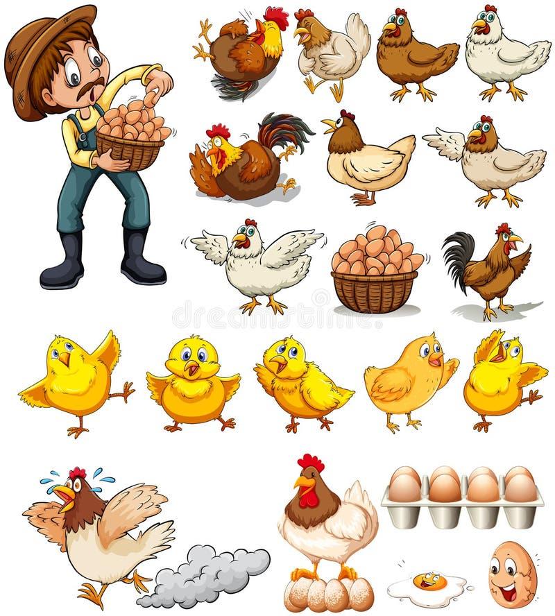 Granjero que recoge los huevos de pollos ilustración del vector