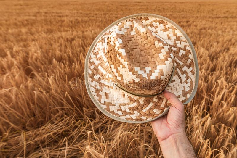 Granjero satisfecho alegre que sostiene el sombrero de paja al aire libre fotografía de archivo