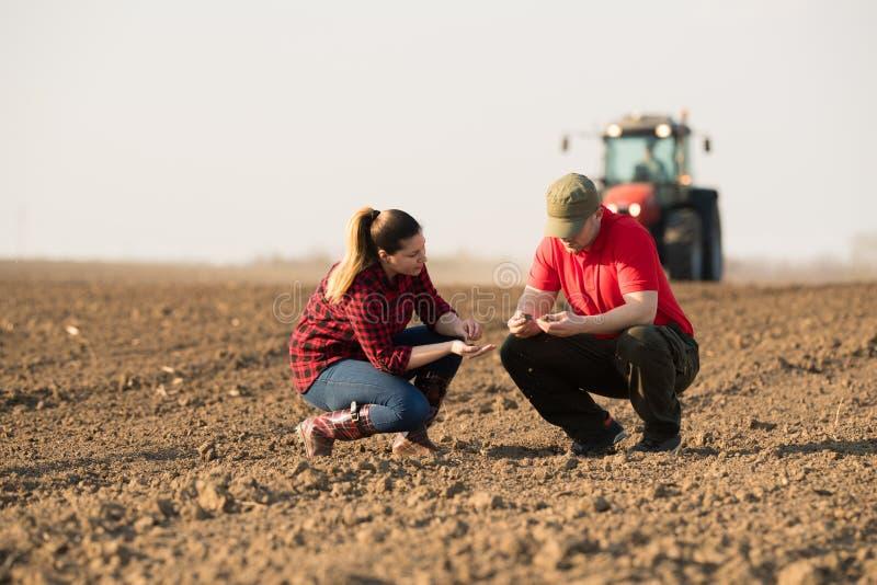 Granjeros jovenes examing trigo plantado mientras que el tractor está arando el fi fotos de archivo