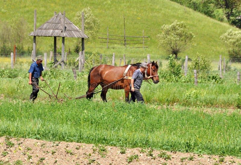 Granjeros que aran con el caballo fotos de archivo