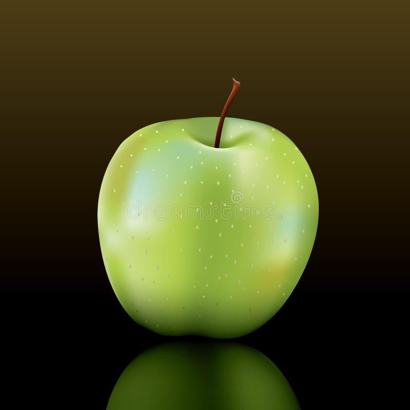 Free Granny Smith Apple Stock Photo - 13210230