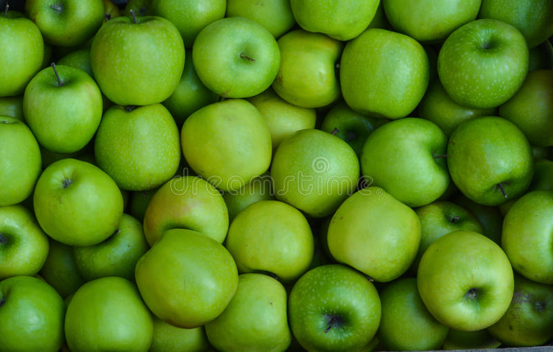 Granny Smith - Green apples. Granny Smith apples are apples originating from Australia, they are green fruits with sweet and sour taste stock photography