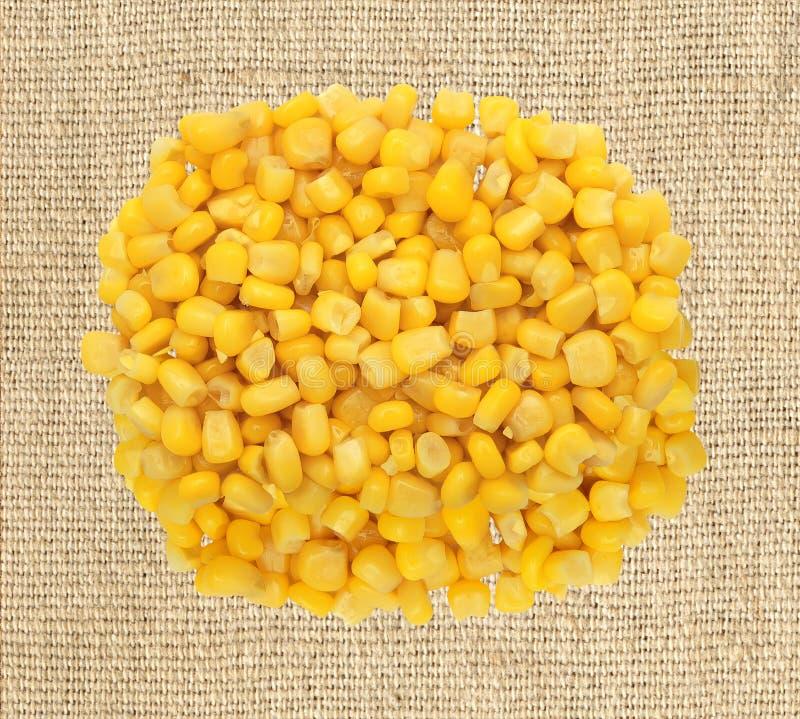 Grano amarillo dulce del maíz en el paño de la arpillera foto de archivo libre de regalías