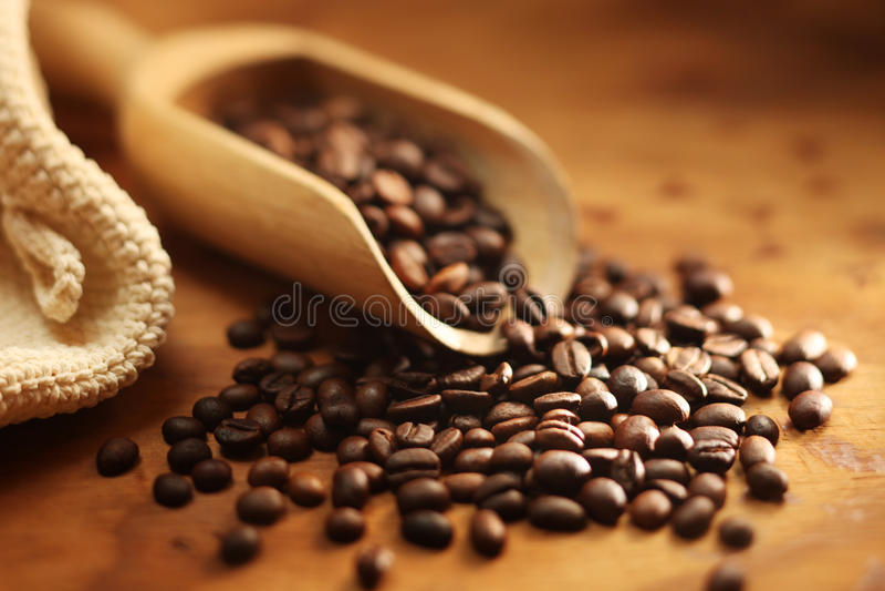 Grano de café fresco fotografía de archivo libre de regalías