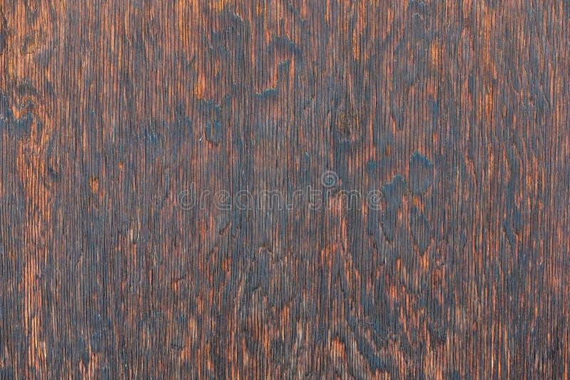 Grano de madera imágenes de archivo libres de regalías