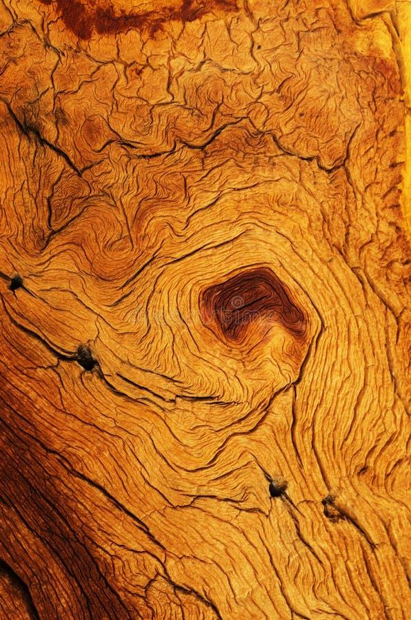 Grano de madera resistido fotografía de archivo libre de regalías