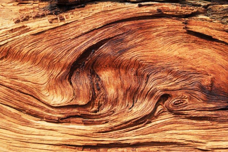 Grano de madera torcido imagenes de archivo