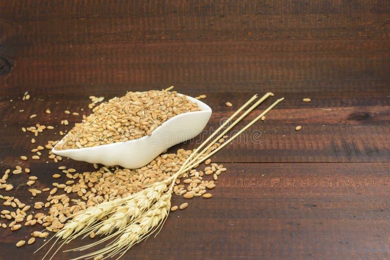 Grano e cereali immagine stock