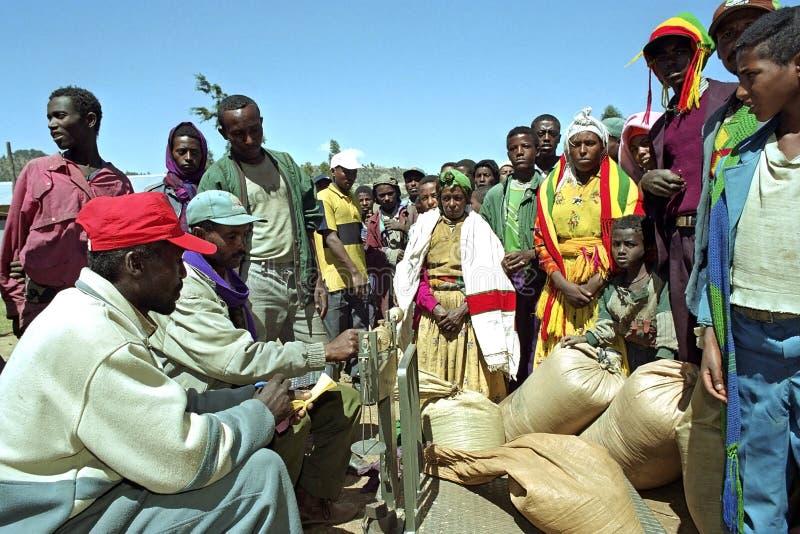 Grano etíope de la venta de los granjeros para comercializar al comerciante fotografía de archivo