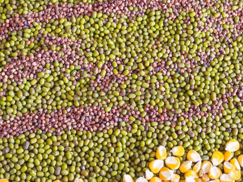 Grano multi, maíz, semilla en piso imágenes de archivo libres de regalías